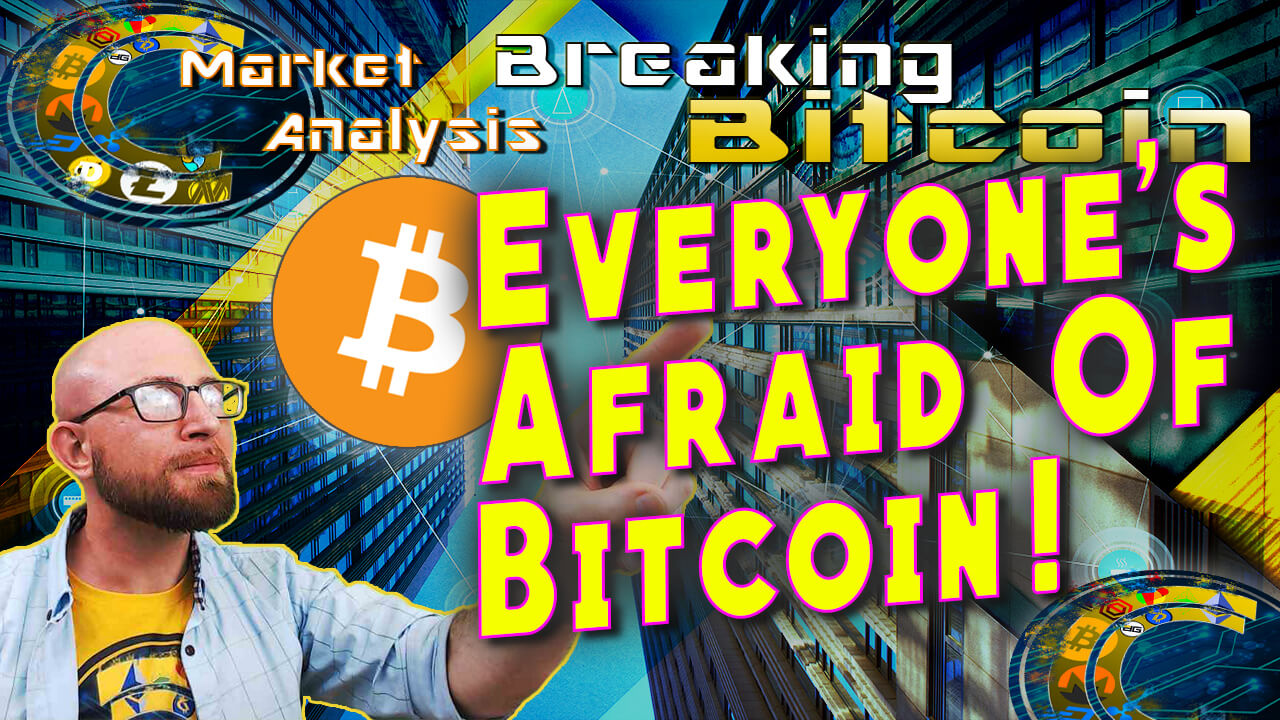 text everyone's afradi of bitcoin next to looking up into distance with hand entended pointing at the text justin with city skyscraper looking graphic background and bitcoin logo
