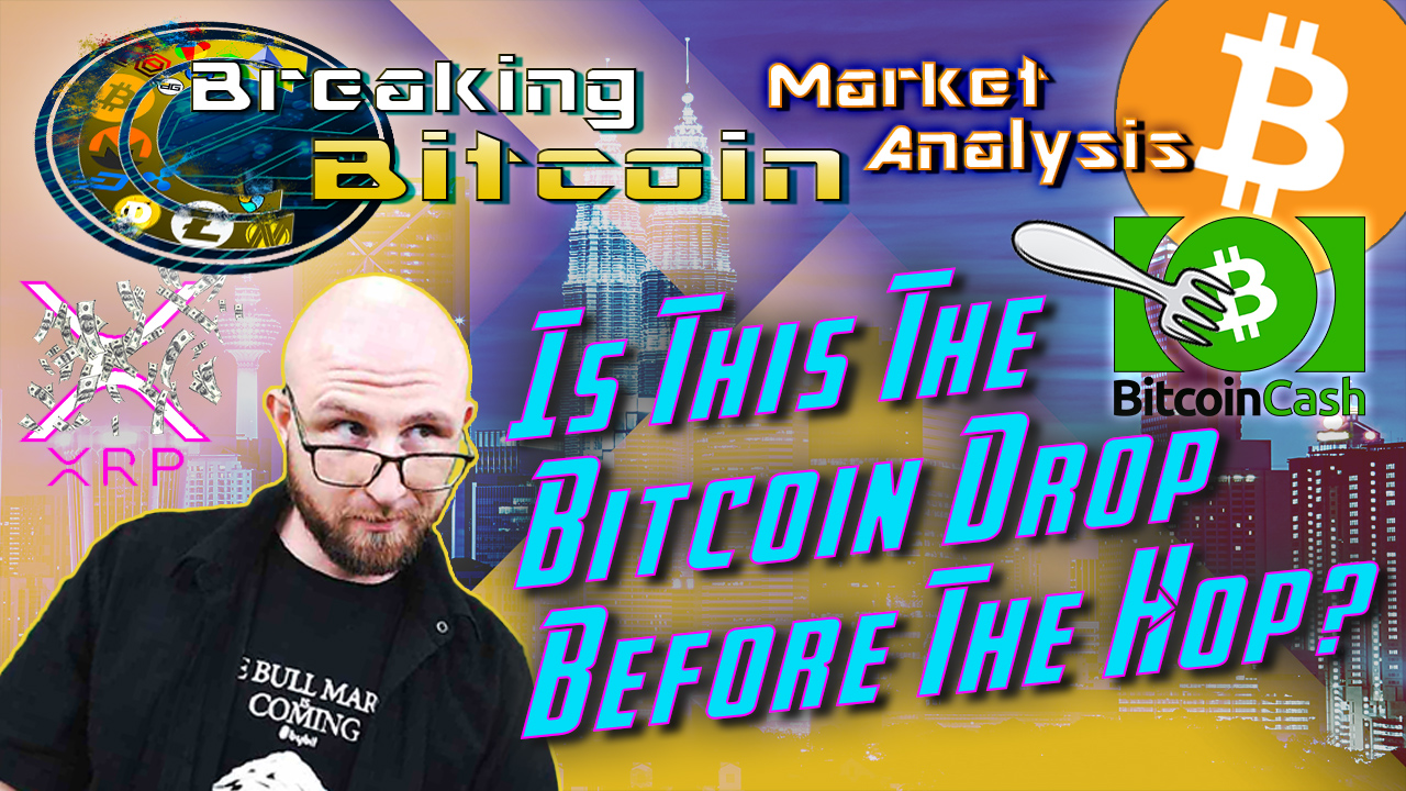 text is this the bitcoin drop before the hop? next to jay looking over his glasses at the words with bitcoin cash logo and fork over it and xrp logo with money raining over it and background graphic with bitcoin logo